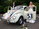 Herbie Love Bug Replica(s)